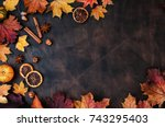 autumn background with candied... | Shutterstock . vector #743295403
