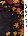 autumn background with candied... | Shutterstock . vector #743295409