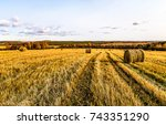 agriculture field harvest... | Shutterstock . vector #743351290