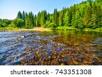 Forest River Water Landscape