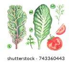 watercolor painting of... | Shutterstock . vector #743360443