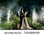 wedding couple are looking to... | Shutterstock . vector #743488498