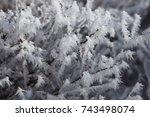 hoar frost   snow covered... | Shutterstock . vector #743498074