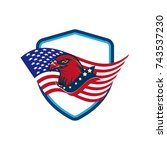 american eagle vector... | Shutterstock .eps vector #743537230