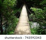 forest bridge | Shutterstock . vector #743592343