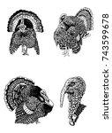 graphical set of turkeys... | Shutterstock .eps vector #743599678