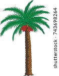 palm date tree  sketch  vector  ... | Shutterstock .eps vector #743698264