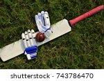cricket gloves and bat on green ... | Shutterstock . vector #743786470