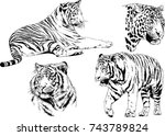set of vector drawings on the... | Shutterstock .eps vector #743789824