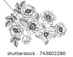 flowers drawing with line art... | Shutterstock .eps vector #743802280
