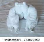 towel animal at bed time | Shutterstock . vector #743893450