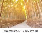 walkway leading in to bamboo... | Shutterstock . vector #743919640