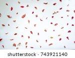 autumn leaves against white... | Shutterstock . vector #743921140