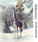 Giraffe In The Winter Forest....