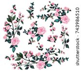 set of flowering branches of a... | Shutterstock . vector #743986510