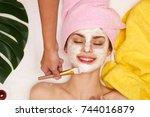 beautiful woman  spa salon ... | Shutterstock . vector #744016879