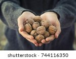 hands holding shelled walnuts | Shutterstock . vector #744116350