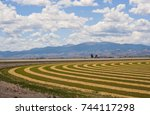 a hay field in the agricultural ... | Shutterstock . vector #744117298