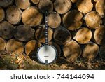 banjo and a wood pile