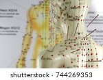 female acupuncture model with... | Shutterstock . vector #744269353