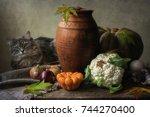 Kitty And Autumn Still Life...
