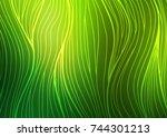 dark green vector doodle... | Shutterstock .eps vector #744301213