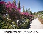 pergola magenta | Shutterstock . vector #744323323