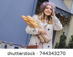 charming french beauty.... | Shutterstock . vector #744343270