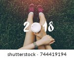 2018 new year infographic and... | Shutterstock . vector #744419194