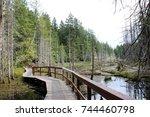 a grey land brown wooden trail... | Shutterstock . vector #744460798