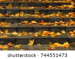 orange maple leaves on stairway.... | Shutterstock . vector #744551473