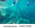 snorkeling trips watch the sea... | Shutterstock . vector #744571990