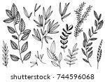 hand drawn botanical...   Shutterstock .eps vector #744596068