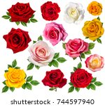 rose isolated on white... | Shutterstock . vector #744597940