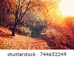 autumn nature landscape.... | Shutterstock . vector #744652249
