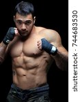muscular fighter  isolated on...   Shutterstock . vector #744683530