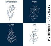 vector collection of four hand... | Shutterstock .eps vector #744686158