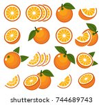 fresh orange fruits. vector... | Shutterstock .eps vector #744689743