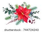 christmas bouquet arranged from ... | Shutterstock .eps vector #744724243