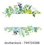 horizontal botanical vector... | Shutterstock .eps vector #744724288