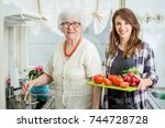 smiling grandmother with... | Shutterstock . vector #744728728