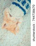 Stock photo little red kitten the kitten lies on the fluffy carpet at home little kitten sleeps close up of 744738670