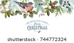 Vector vintage border with winter forest branches and bird. Highly detailed winter design for Christmas greeting card, party invitation, holiday sales. Can be used for poster, web page, packaging | Shutterstock vector #744772324