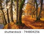 colorful autumn in the park.... | Shutterstock . vector #744804256