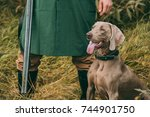 cropped image of man in... | Shutterstock . vector #744901750