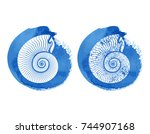 seashell nautilus vector icon...