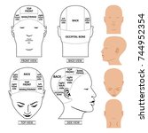 man head divisions scheme... | Shutterstock . vector #744952354