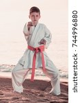 handsome boy doing karate at... | Shutterstock . vector #744996880