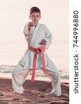 handsome boy doing karate at... | Shutterstock . vector #744996880
