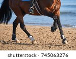 Detail Of A Horse Trainig At...